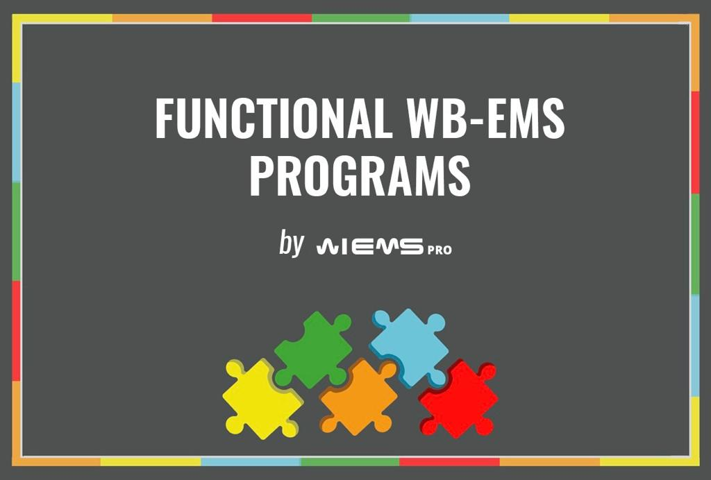 FUNCTIONAL WB-EMS, NEW CONCEPT BASED ON SCIENCE
