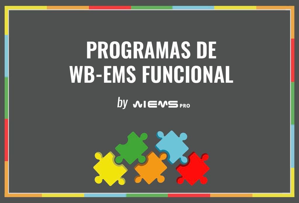 WB-EMS FUNCIONAL, NUEVO CONCEPTO BASADO EN LA CIENCIA
